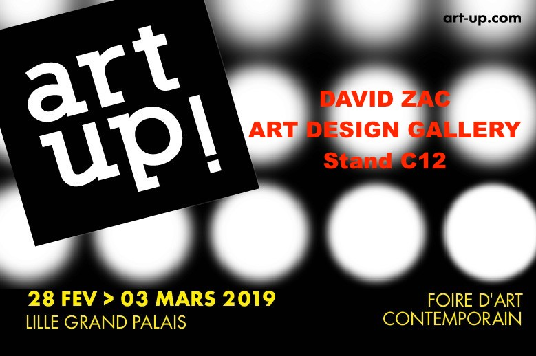EXPOSTION DAVID ZAC LILLE ART UP du 27 février au 03 Mars 2019